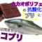 「チョコブリ」が話題!魚もチョコレートを食べる時代に?!
